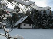 Apartments - rooms Bohinj See