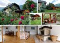 Apartments ALBIN Slovenia accommodation